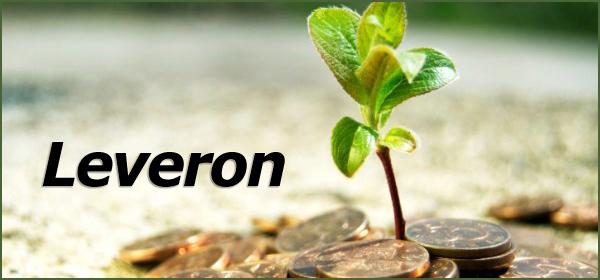 Обзор проекта Leveron: анализ рисков, план инвестирования